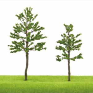 TLS05 Pyramidal Shaped Trees (1)